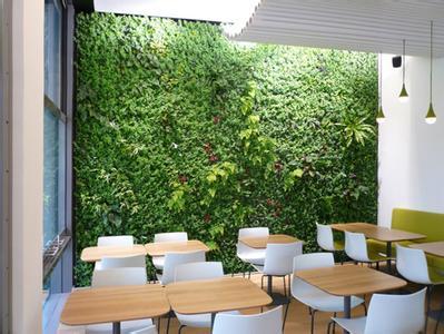 室内植物墙会呼吸:巧用植物墙装点家居环境
